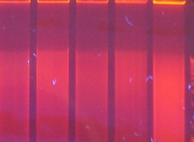 Osobisty lek na raka dzięki super czułemu laserowi