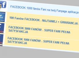 fot. screen aukcji z Allegro.pl