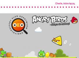 Case study: Jak wykorzystać wściekłe ptaki?