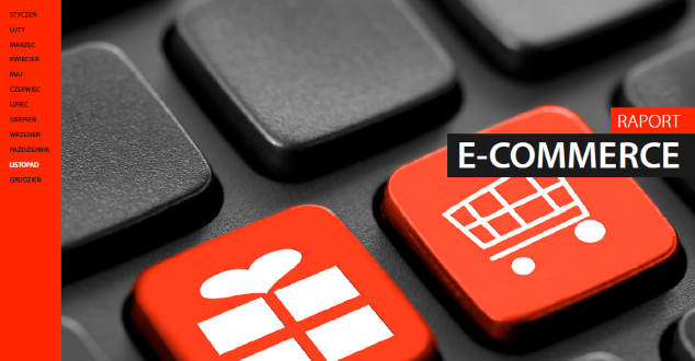 raport e-commerce 2015