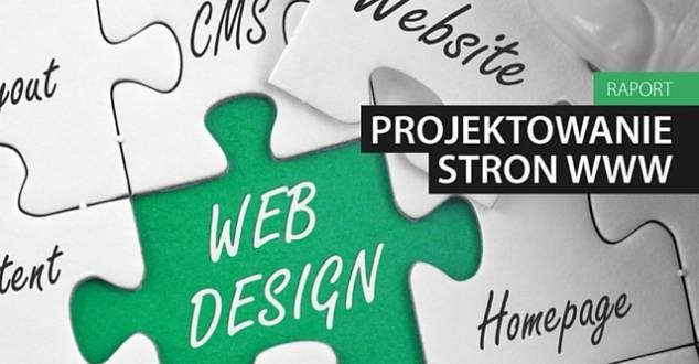 Błędy najczęściej występujące w polskich portalach internetowych w obszarze usability