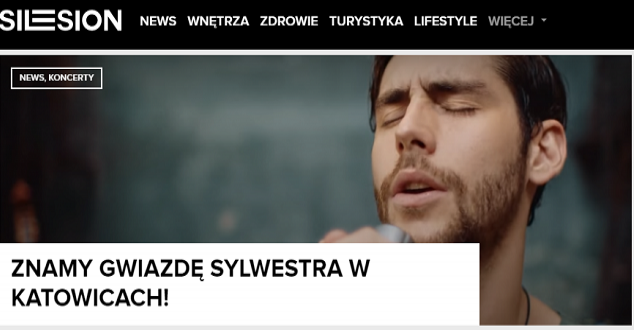 screen: www.silesion.pl