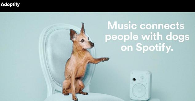Spotify pomoże Ci znaleźć psa, który podzieli Twoje muzyczne zainteresowania [WIDEO]