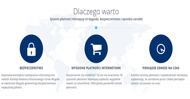 Printscreen strony Homepay.pl