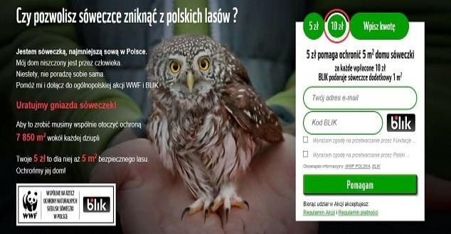 BLIK wprowadza płatność bezpośrednio z banera reklamowego