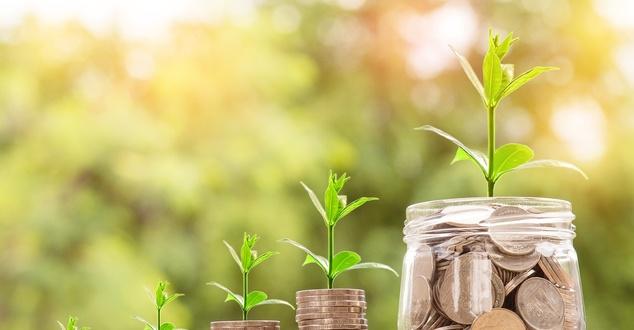 wartość, pieniądze, marka, fot. nattanan23, pixabay