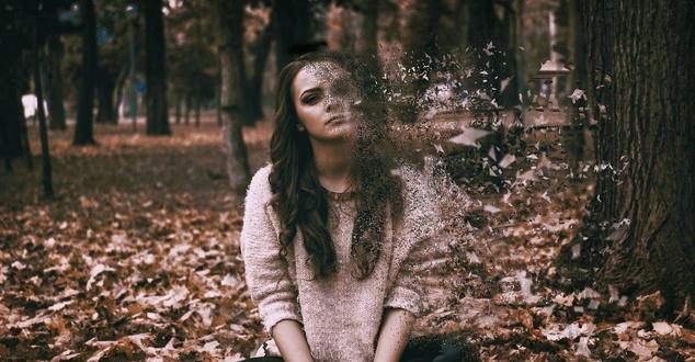 kobieta, stres, las, fot. shiftgraphix, pixabay