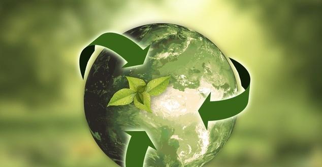 Opakowania z recyklingu w Biedronce. Sieć ogranicza zużycie plastiku pierwotnego