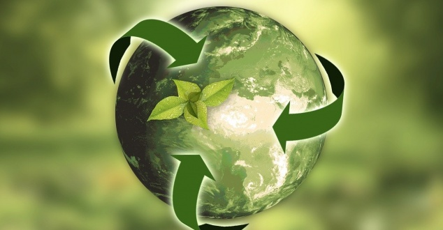 ekologia, recykling, fot. annca, pixabay