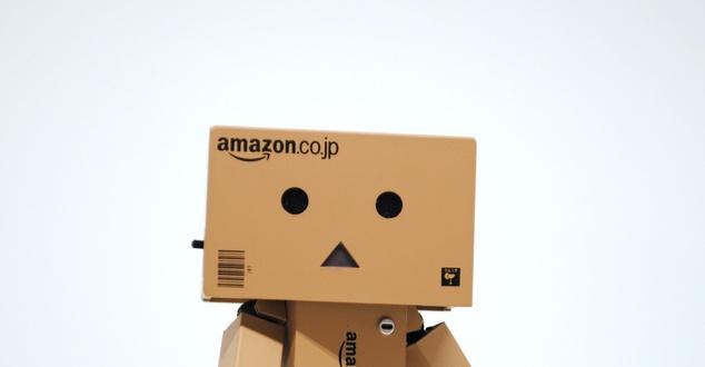 Amazon   fot. Hello I'm Nik   Unsplash